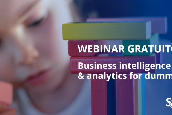 "Webinar gratuito: ""Business Intelligence & Analytics for dummies"""
